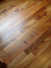 English Elm in a Bristol town house. Pictures taken five years after floor laid. Repair works to joists were made before - Photo 2 of 15